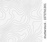 topographic map background... | Shutterstock .eps vector #1073761301