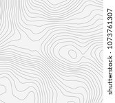 topographic map background... | Shutterstock .eps vector #1073761307