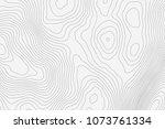 topographic map background... | Shutterstock .eps vector #1073761334