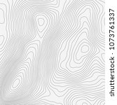 topographic map background... | Shutterstock .eps vector #1073761337