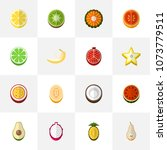 set of 16 editable berry icons...