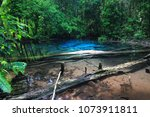 emerald pool the miracle krabi... | Shutterstock . vector #1073911811