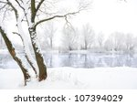 Frozen River And Trees In...