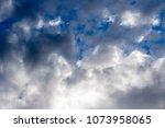 white  grey heavy fluffy ... | Shutterstock . vector #1073958065