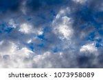 white  grey heavy fluffy ... | Shutterstock . vector #1073958089