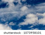 white  grey heavy fluffy ... | Shutterstock . vector #1073958101