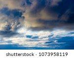 white  grey heavy fluffy ... | Shutterstock . vector #1073958119