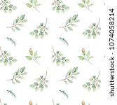 watercolor floral background... | Shutterstock . vector #1074058214