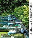 the aquatic plant nursery at...   Shutterstock . vector #1074090041