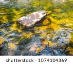Small photo of pop rock stone on the river