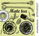 """Illustration with mate tea in calabash and bombilla and """"yerba mate"""" plant. Drink mate, bomber, calabash, and mate branch and leaves. Hand drawn illustration."""