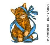 little kitten with blue gift... | Shutterstock .eps vector #1074173807