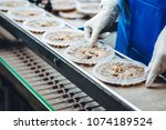 fish seafood factory | Shutterstock . vector #1074189524