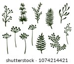 willow and palm tree branches ... | Shutterstock .eps vector #1074214421