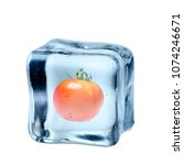 the tomatoes were frozen in ice | Shutterstock . vector #1074246671