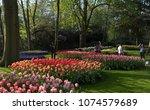 lisse  netherlands   april 19 ...   Shutterstock . vector #1074579689