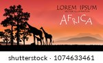 african wildlife background.... | Shutterstock .eps vector #1074633461