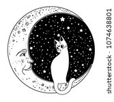 the cat on the moon. vector... | Shutterstock .eps vector #1074638801
