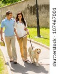 Stock photo couple in love walking labrador dog in park sunny day 107467001