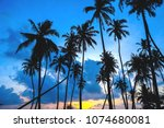 the beauty of nature during... | Shutterstock . vector #1074680081