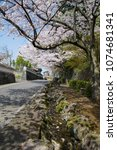 Small photo of Slop street with cherry blossom of old town of countryside in Saga prefecture, JAPAN.