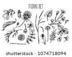 beautiful hand drawn vector... | Shutterstock .eps vector #1074718094
