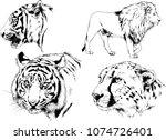 vector drawings sketches... | Shutterstock .eps vector #1074726401