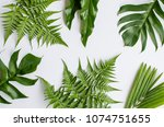 ornamental leaves for... | Shutterstock . vector #1074751655