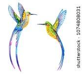 hummingbird. illustration... | Shutterstock . vector #1074808031