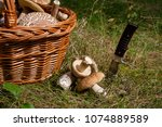 harvested at autumn amazing... | Shutterstock . vector #1074889589