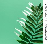 green tropical palm leaf with... | Shutterstock . vector #1074930425