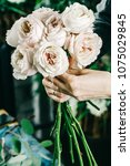 roses in brides flower bouquet... | Shutterstock . vector #1075029845