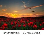 Small photo of Lest we Forget poppy field with with WW11 planes flying across as the sun goes down.