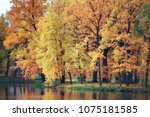 pond in an autumn park  ... | Shutterstock . vector #1075181585