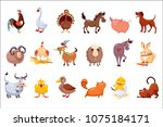 set of farm animals. livestock... | Shutterstock .eps vector #1075184171