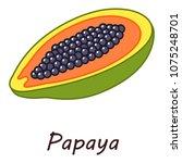 papaya icon. isometric...   Shutterstock .eps vector #1075248701