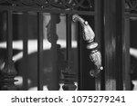 an antique bronze doorknob....   Shutterstock . vector #1075279241