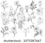 hand drown vector flowers vol.1 | Shutterstock .eps vector #1075387667