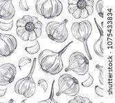 hand drawn  garlic. vector...   Shutterstock .eps vector #1075433834