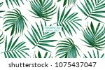 vector palm frond. tropical... | Shutterstock .eps vector #1075437047
