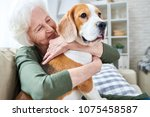 Stock photo cheerful retired senior woman with wrinkles smiling while embracing her beagle dog and enjoying 1075458587