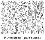 plant and flower specimen... | Shutterstock .eps vector #1075568567