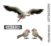 Vector. Birds Are Realistic ...