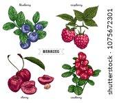 set of hand drawn berries...   Shutterstock .eps vector #1075672301