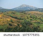 carpatian mountains summer... | Shutterstock . vector #1075775351