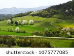 landscape in the spring | Shutterstock . vector #1075777085
