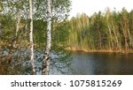 spring landscape with a forest... | Shutterstock . vector #1075815269