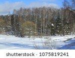 winter landscape russia moscow... | Shutterstock . vector #1075819241