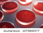 red petri dishes with samples... | Shutterstock . vector #1075840577