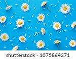 daisy pattern. flat lay spring...   Shutterstock . vector #1075864271
